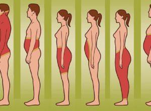 6 типов жировых отложений на теле и как избавиться от них